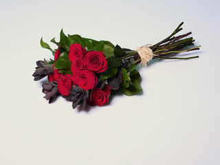 Bunch of red roses, white background