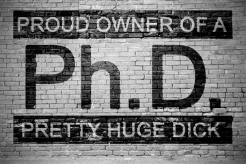 Ph.d. Proud Owner of a Pretty Huge Dick Ziegelsteinmauer Graffiti