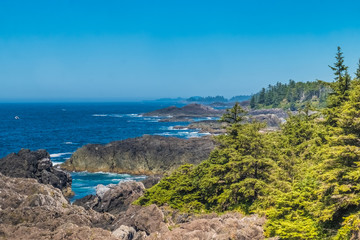 Wild Pacific Trail, Ucluelet, Vancouver Island in British Columbia, Canada. Located at the edage of the the Pacific Rim National Park Reserve.