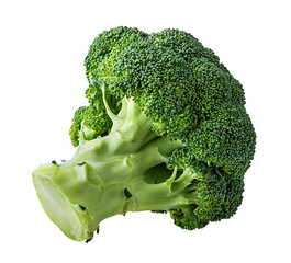 Tree fresh broccolis isolated on white background with clipping path
