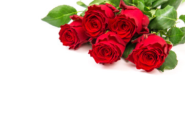 Red rose flowers bouquet white background