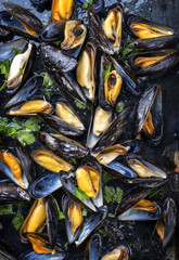 Traditional barbecue Italian blue mussel in white wine as top view on a tray