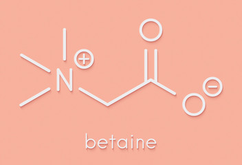 Betaine (glycine betaine, trimethylglycine) molecule. Originally found in sugar beet (Beta vulgaris). Skeletal formula.