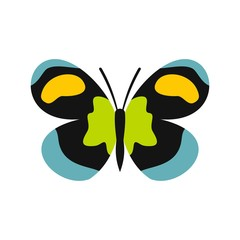 Unusual butterfly icon, flat style