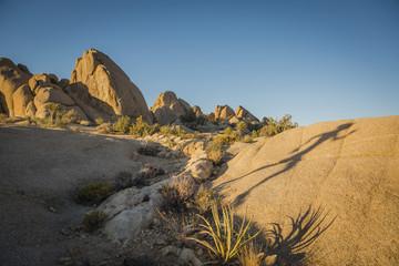 Shadow of Hispanic woman running in desert