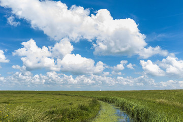 Scenic view of cloudscape over grassy landscape