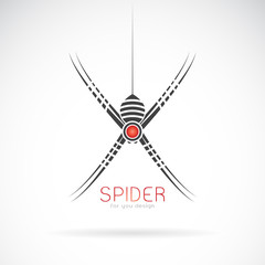 Vector of spider design on white background. Insect. Animal. Easy editable layered vector illustration.