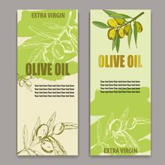label olive oil, vector illustration banner, cover, broshure, hand-drawn branch olives