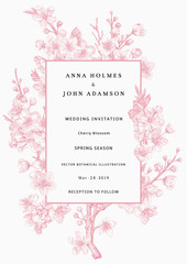 Wall Mural - Sakura. Wedding invitation. Pink cherry blossom branch. Vector botanical illustration.