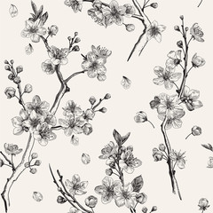 Wall Mural - Sakura. Seamless pattern. Cherry blossom branches. Vector botanical illustration. Black and white