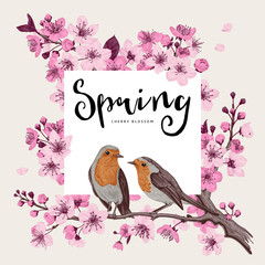 Wall Mural - Spring. Pink cherry blossom branch witch birds. Vector botanical illustration.