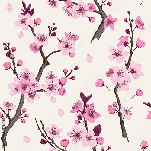 Wall mural Sakura. Seamless pattern. Pink Cherry blossom branches. Vector botanical illustration.