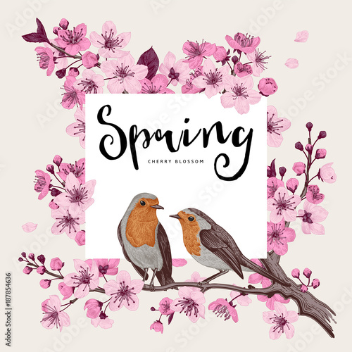 Wall mural Spring. Pink cherry blossom branch witch birds. Vector botanical illustration.