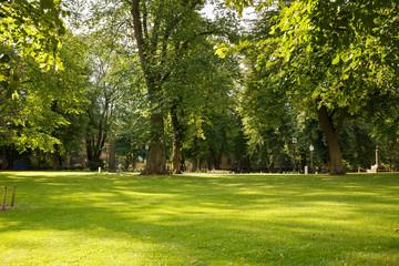 Fototapeta Park in Stockholm