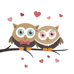 Couple of owls in love on a white background
