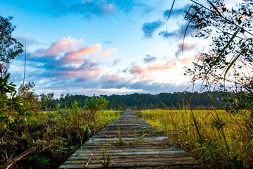 wooden on pier on south carolina low country marsh at sunrise with cloudy sky