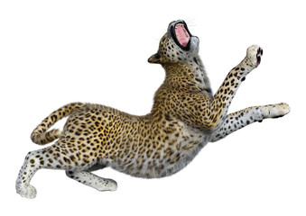 3D Rendering Big Cat Leopard on White