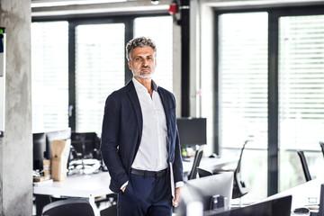 Portrait of confident mature businessman standing in office