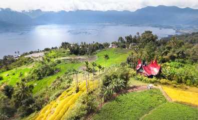Rice field parts divided to plots by water channels and pathways,aerial shot, West Sumatra,Maninjau lake area,Indonesia