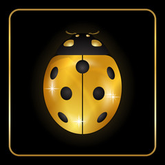 Ladybug gold insect small icon. Golden metal lady bug animal sign, isolated on black background. 3d volume bright design. Cute shiny jewelry ladybird. Lady bird closeup beetle Vector illustration
