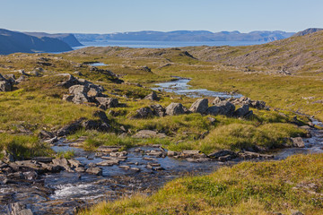 River flowing through tundra landscape with background of fjord of Barents sea, short summer in Finnmark, Norway. Northernmost part of continental Europe