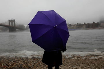 A woman stands at Brooklyn Bridge Park with a purple umbrella as fog partially covers the Manhattan skyline from Brooklyn