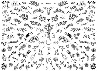 Hand sketched floral design elements for Valentine's Day or weddings, flowers and leaves for text decoration