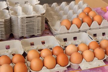 Bright chicken eggs