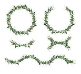 Vector, decorative big element set. Eucalyptus green Leaves round Wreath, greenery branches, garland, border, frame. Elegant designer watercolor objects. Isolated editable laurel foliage illustration