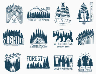 camping badges, mountains coniferous forest and wooden logo. wild nature. landscapes with pine trees and hills. emblem tent tourist, travel for labels. engraved hand drawn in old vintage sketch