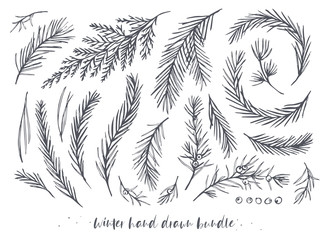 Vector hand drawn elements big set, bundle with winter tree, pine needles, juniper branches with berries, red wood, blue spruce, cedar evergreen leaf. Winter holiday, Christmas decorative art objects