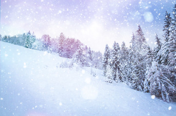 Beautiful winter landscape with snow on the trees