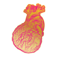 Valentine's day anatomical human heart. Print on t shirts concept. Sticker, pin or patch. flesh tattoo hand drawing idea. Vector.