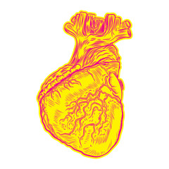 Heart in flesh tattoo concept. Anatomic human heart Symbol of love, Valentine's day heart t-shirt design. Vector.