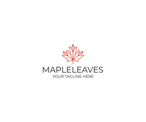Line maple leaf logo template. Geometric autumn leaf vector design. Plant illustration
