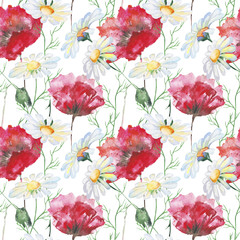 Stylized Poppy and Daisies flowers illustration. watercolor
