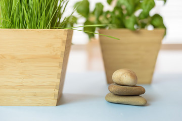 Natural elements background for health/spa/wellness comcept