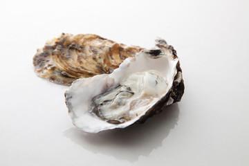 新鮮な牡蛎