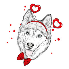 Funny dog in accessories with hearts. Vector illustration for a postcard or a poster, print for clothes. Valentine's Day, love and friendship.