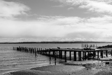 Old Dock, Tokeland, Washington, Winter 2017