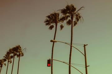 Vintage Red Light - Los Angeles