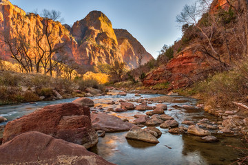 Printed roller blinds Deep brown Zion National Park
