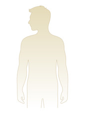Blank male body template vector illustration, front view torso.