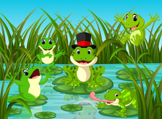 many frogs on leaf with river scene