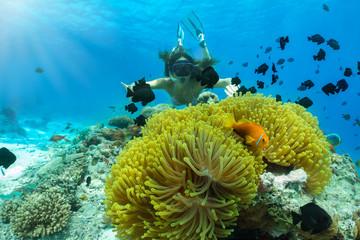 Frau beim Schnorcheln in tropischen Gewässern mit Clownfischen und Anemonen