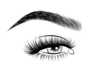 Hand-drawn woman's sexy luxurious young woman with perfectly shaped eyebrows and full lashes. Idea for business visit card, typography vector. Perfect salon look. Natural hairstyle and bold lips