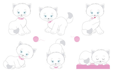 Set of white kittens in different poses