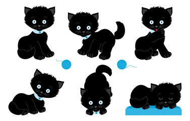 Set of black kittens in different poses