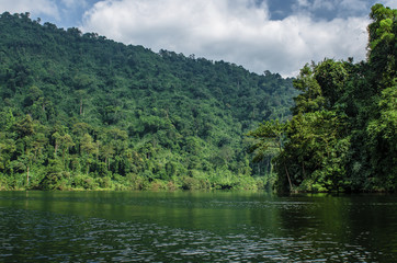 a lake in the jungle of Thailand