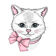 Hand drawn portrait of white cat with a pink bow